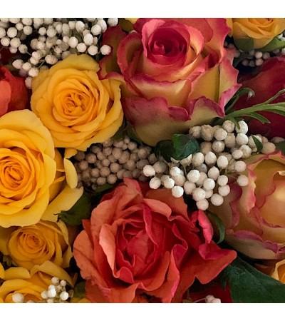 Roses d'Avril