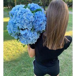 ☀️Week-end ensoleillé avec grand août, belle brassée d'hortensias bleus ☀️ Disponible à la livraison aujourd'hui et demain de 10h à 20h.🌿 #flowers#fleurs #bouquetdefleurs #livraison #livraisongratuite #aixenprovence #aixmaville #blossom #blossomaix #flowers #petals #beautiful #love #pretty #plants #sopretty #summer #flowerstagram #flowersofinstagram #flowersstyles_gf #bloom #blooms #floweraddict