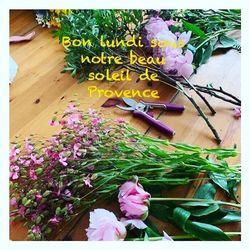 🌿Nous vous souhaitons un bon lundi à tous. C est parti pour nous pour une semaine bien remplie. Préparation de jolies bouquets pour aujourd'hui et mariage pour ce week-end🌿 #mariage  #flowers#fleurs #bouquetdefleurs #livraison #livraisongratuite #aixenprovence #aixmaville #blossom #blossomaix #flowers #petals #beautiful #love #pretty #plants #sopretty #summer #flowerstagram #flowersofinstagram #flowersstyles_gf #bloom #blooms #floweraddict