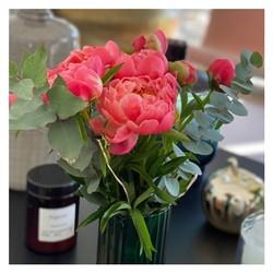 🌿 Des pivoines pour le mois de mai ça vous dit? nouvel arrivage de pivoines aujourd'hui sur le shop. Réservez vite les vôtres 💐 🌿 • • www.blossom-aix.com 06.19.02.68.88 #pivoines #flowers#aixmaville